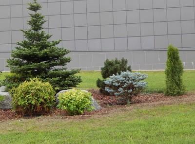 Zielony skwer miejski - fot. fotolia
