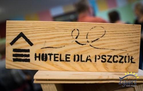 idź do galerii Zgierskie hotele dla pszczół