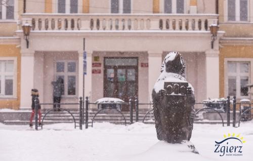 Jeż na placu Jana Pawła II
