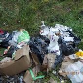 Zdjęcie śmieci - fot. Straż Miejska w Zgierzu