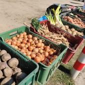 Warzywa do sprzedaży