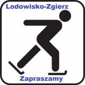 Logo lodowiska