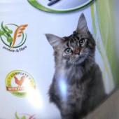 Karma dla kotów