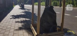 Worki na drzewach przy ul. Dubois w Zgierzu