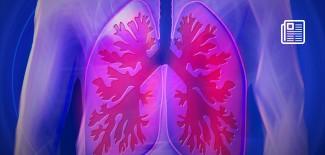 Płuca - fot. pixabay.com (domena publiczna)