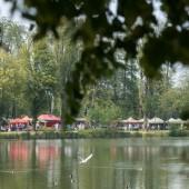 Piknik  w parku w 2018 r.
